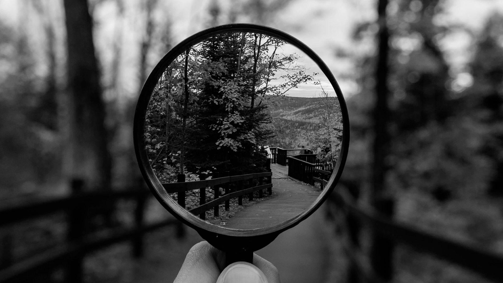 Qué es la búsqueda inversa de imágenes y cómo funciona