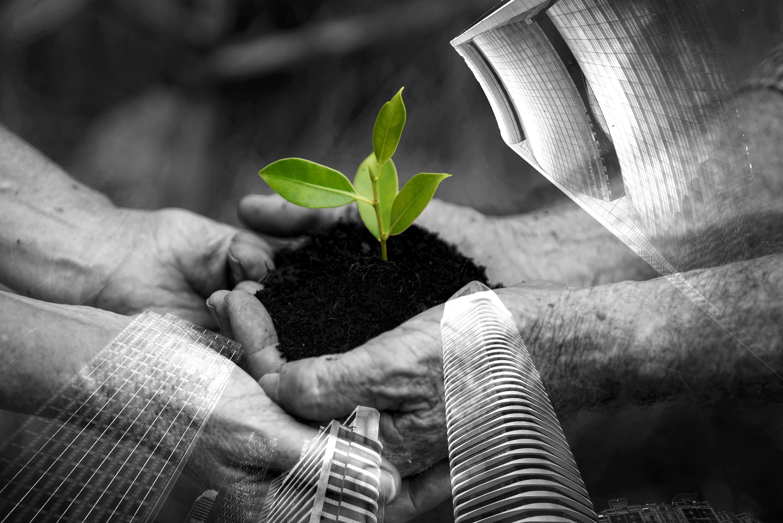 Sostenibilidad y empresas: cuando el movimiento se demuestra andando